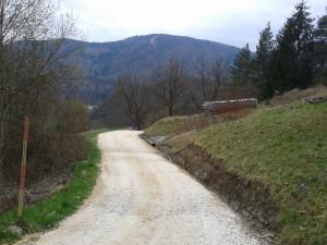 Zg. Izlake cesta